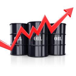 Commodity Prices: A Bumpy Path Upward